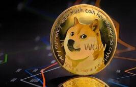 DOGE ve altcoinler ne olacak? İşte detaylar